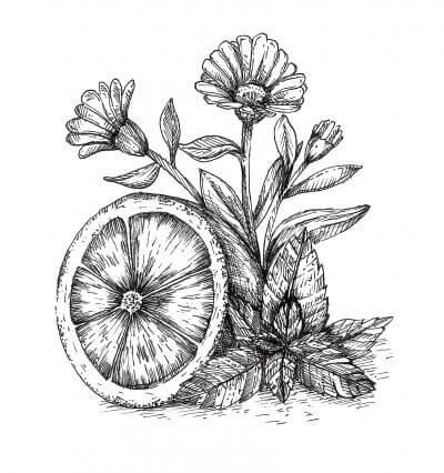 שמנים אתריים שמן תפוז מתוק, שמן אתרי מנטה